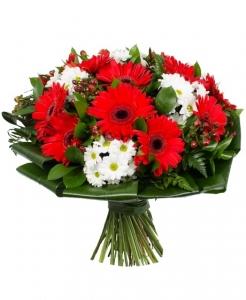 Serenada - Gėlių pristatymas į namus Marijampolėje