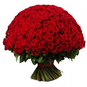301 raudona rožė - Gėlių pristatymas į namus Kėdainiuose