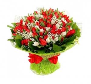 Raudonai baltos tulpės - Gėlių pristatymas į namus Vilniuje