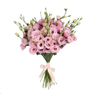 Rožinės eustomos - Gėlių pristatymas į namus Kėdainiuose