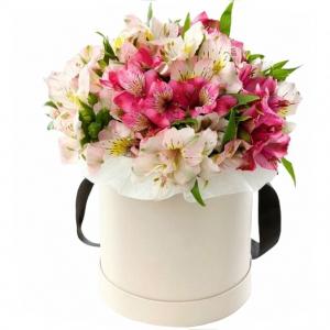 Alstromerijos dėžutėje - Gėlių pristatymas į namus Kėdainiuose