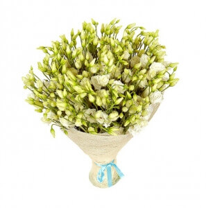 Baltas šilkas - Gėlių pristatymas į namus Marijampolėje