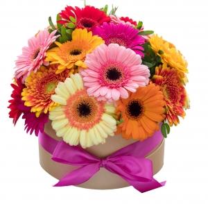 Gėlių dėžutė Gerberų Mix - Gėlių pristatymas į namus Vilniuje