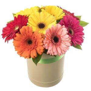 Gėlių dėžutė Spalvos - Gėlių pristatymas į namus Mažeikiuose