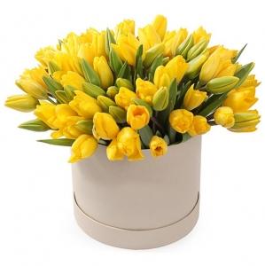 Geltonos tulpės dėžutėje