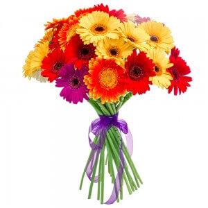 Gerberos Mix - Gėlių pristatymas į namus Kėdainiuose