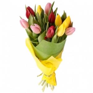 Įvairiaspalvės tulpės - Gėlių pristatymas į namus Kėdainiuose