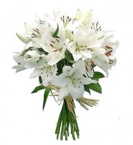 Lelijos - Gėlių pristatymas į namus Mažeikiuose