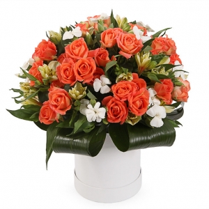 Oranžinė svajonė - Gėlių pristatymas į namus Mažeikiuose