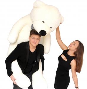Pliušinis meškinas Tedis, baltas 80 - 200cm - Gėlių pristatymas į namus Kėdainiuose