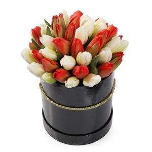 Raudonos ir baltos tulpės dėžutėje - Gėlių pristatymas į namus Vilniuje