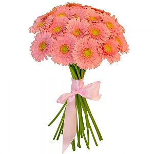 Rožinės gerberos - Gėlių pristatymas į namus Druskininkuose