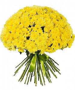 Saulės spinduliai - Gėlių pristatymas į namus Kėdainiuose