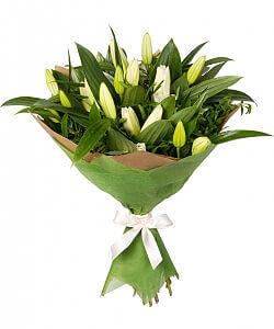 Šiaurinė žvaigždė - Gėlių pristatymas į namus Utenoje