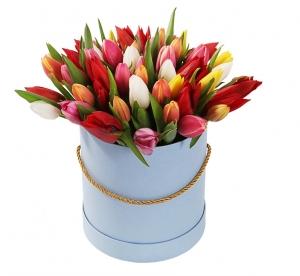 Tulpės dėžutėje - Gėlių pristatymas į namus Utenoje