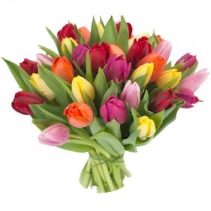 """Tulpės """"Mix"""" - Gėlių pristatymas į namus Kėdainiuose"""