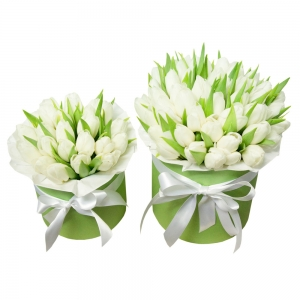 Tulpių dėžutės mamytei ir dukrytei 2